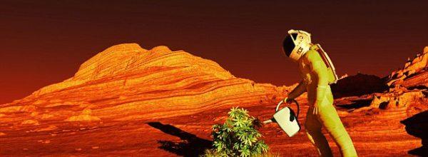 Agriculture Plans for Mars, Dubai Airshow 2017