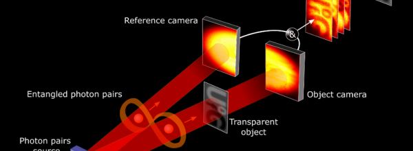 Quantum Holograms Could Make Detailed Images of Our Bodies And Cells